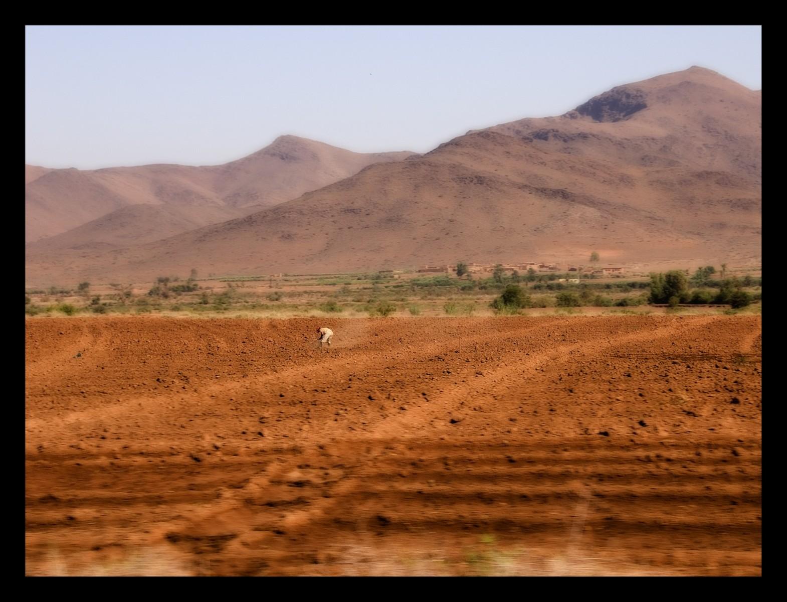 91215_DSC0006-on-desert-at-work Storie di Luce