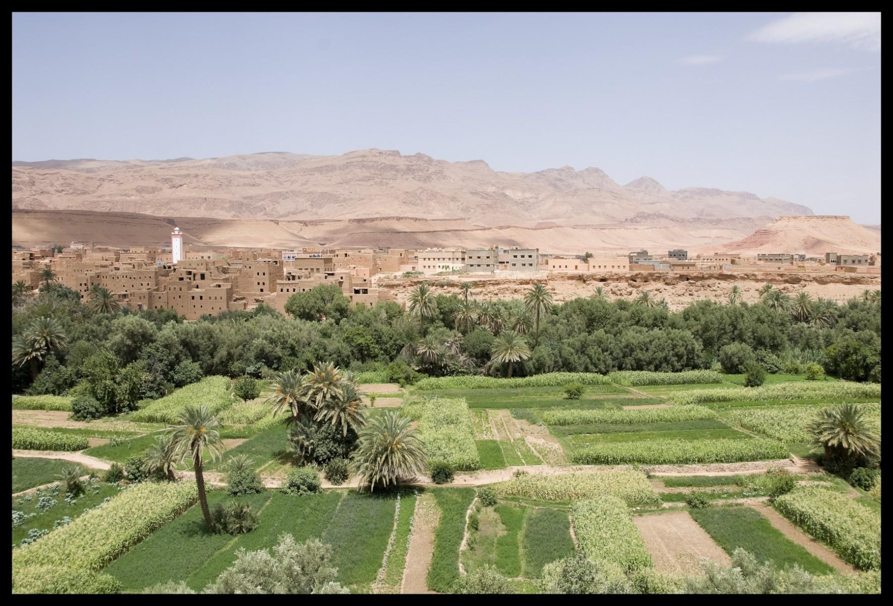 102818_DSC0038 rose valley landscape