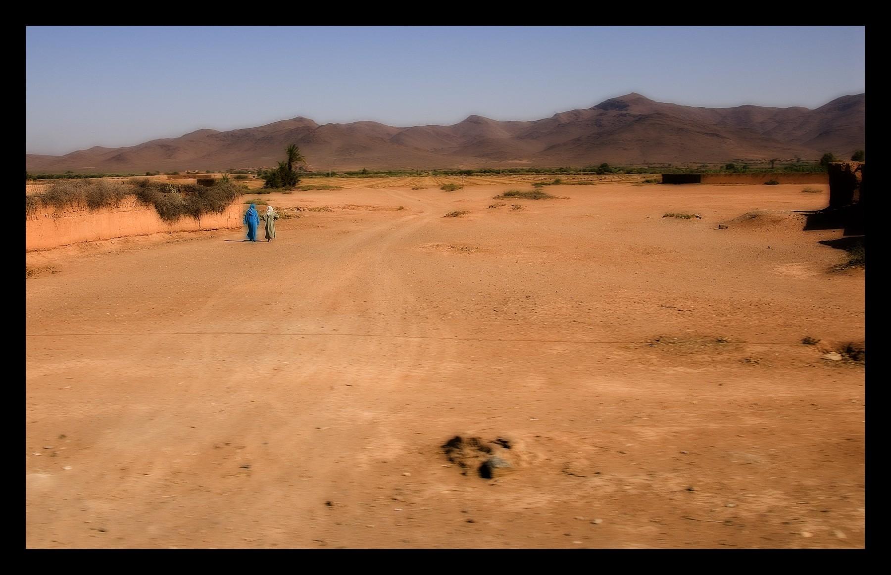 91115_DSC0005 on desert