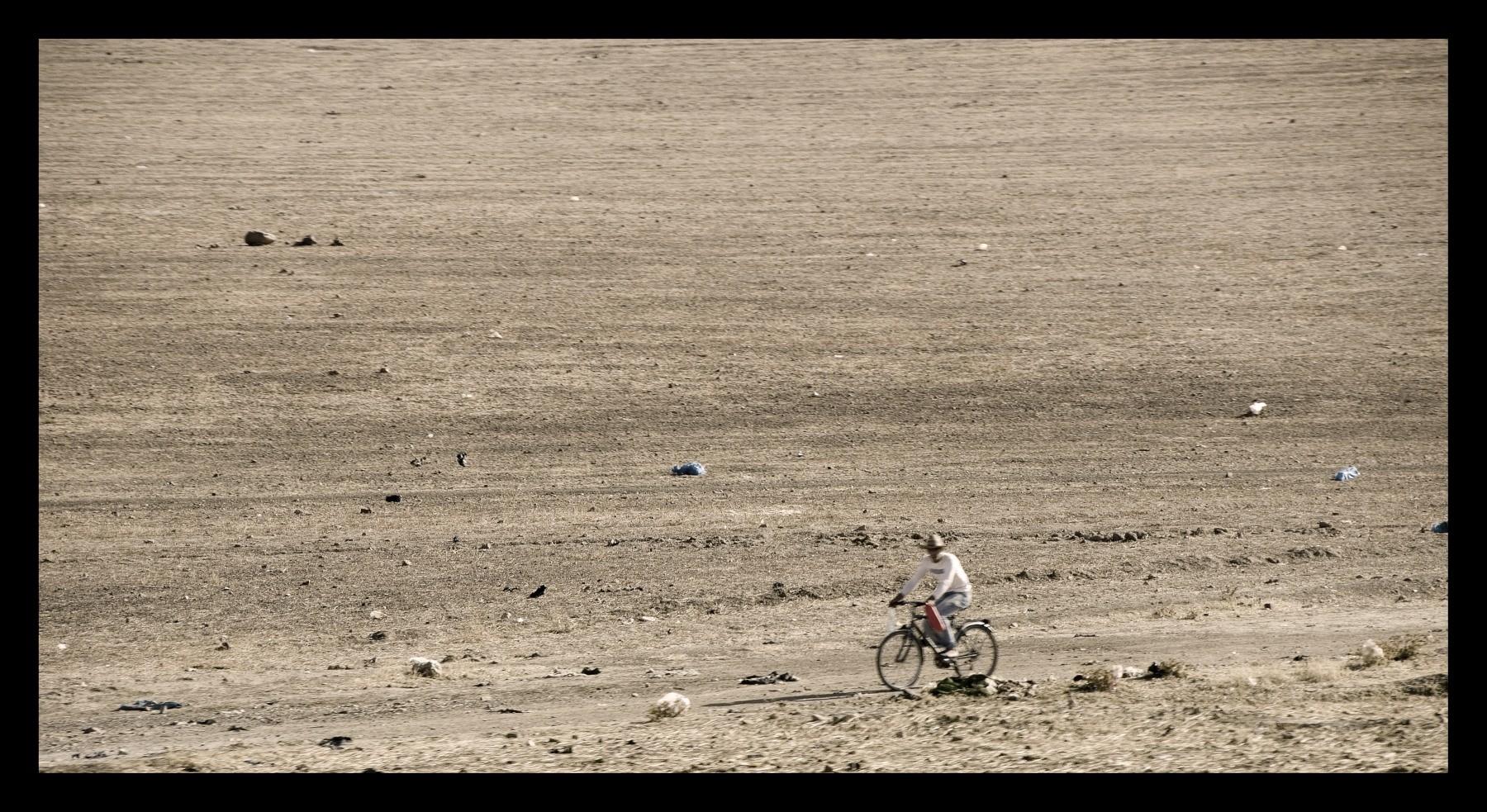 92515_DSC0095 on desert