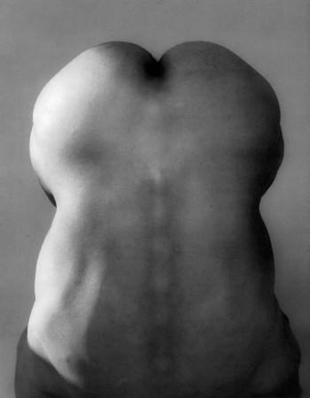 Robert-Mapplethorpe-Raymond-1985-350x450 Una novità: le foto analogiche di Donne Nude.
